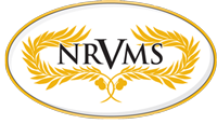 New Realm Vocational and Management Services